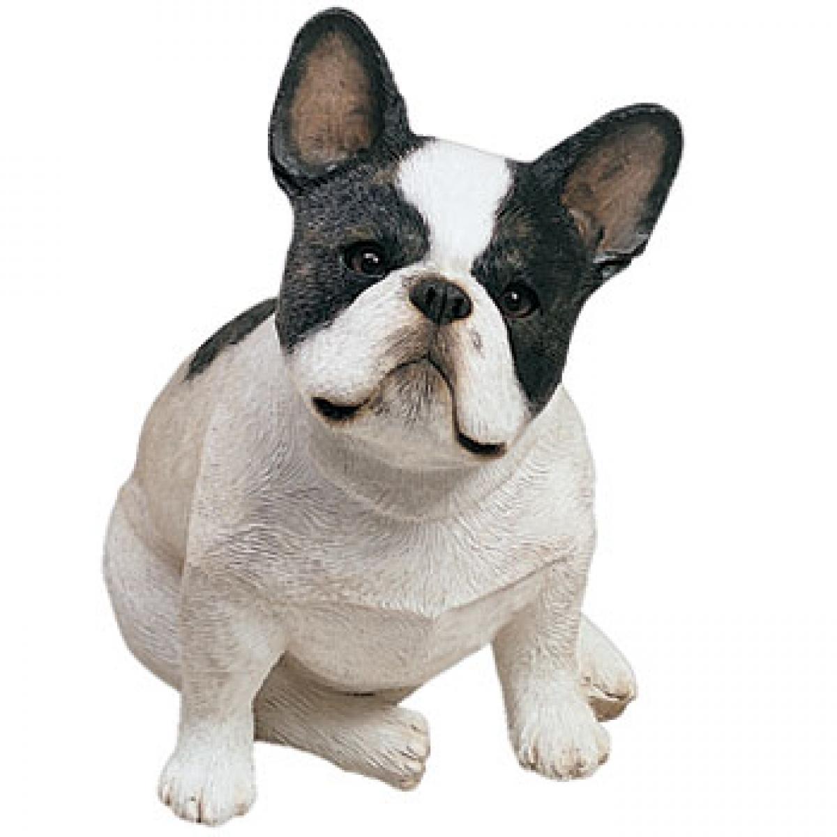 mini französische bulldogge größe