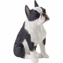Boston Terrier Figur, sitzend