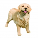 Golden Retriever Figur stehend, light